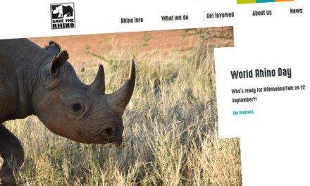 Anstatt Uhr – Save the Rhino – wohin mein Geburtstagsgeld 2019 ging