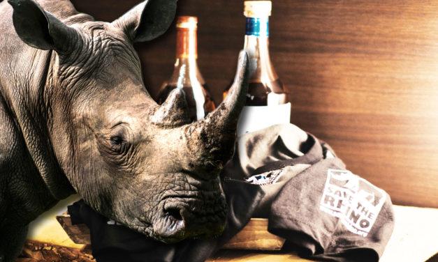 Warum Nashörner die besseren Einhörner sind – Save the Rhino als Weihnachtsgeschenk